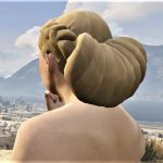 Hairstyle for MP Female - braid with bun 1.0