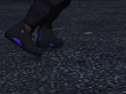 Air Jordan XIV 1.0