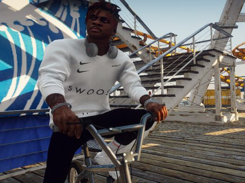 Nike SWOOSH sweaters 1.0