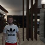 MP Male Adidas Originals T-Shirt pack