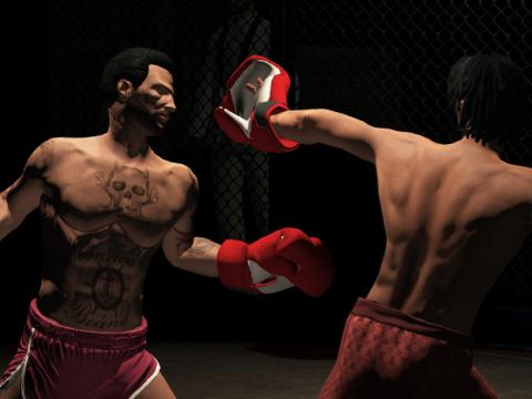 Everlast Boxing Gloves - EUP 1.1