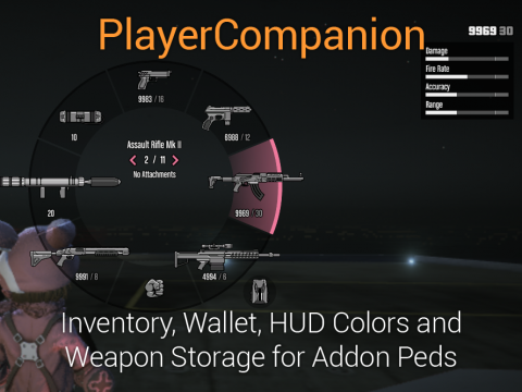 Player Companion 1.0.1