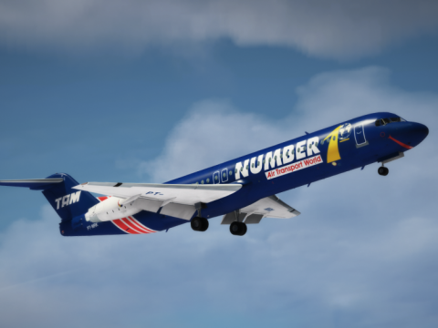 Fokker 100 [Add-On | Liveries] 1.1