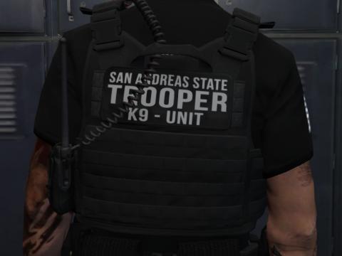 [EUP] SAST Vest Pack [SP / FIVEM] 1.0