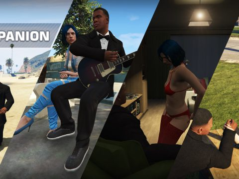 Player Companion 1.0